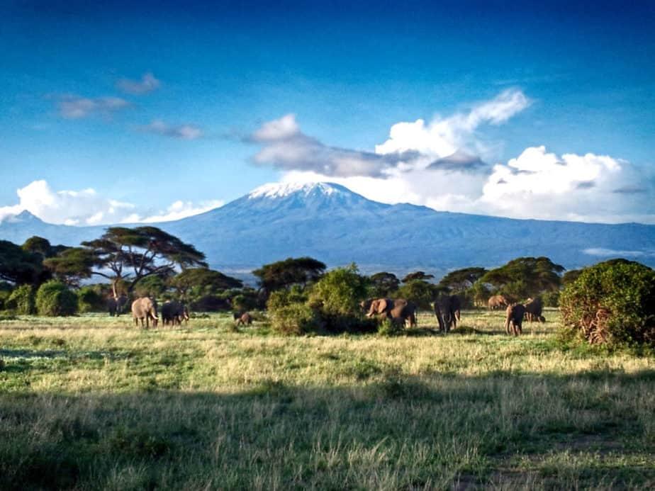 Serengeti Afrika Kenia Kilimandscharo