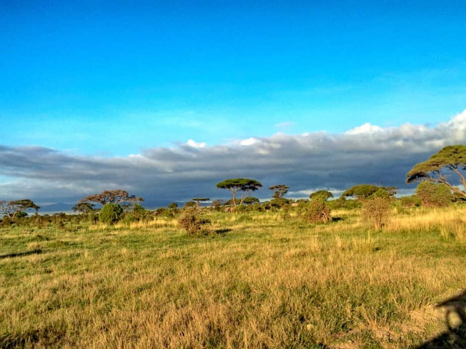 kenia-afrika-reise-bilder-016