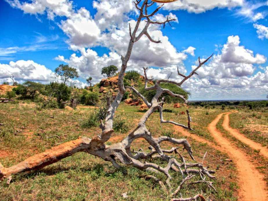 kenia-afrika-reise-bilder-073