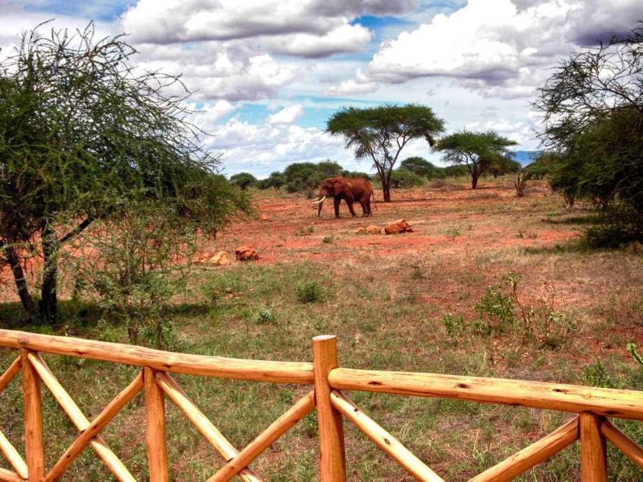 kenia-afrika-reise-bilder-109