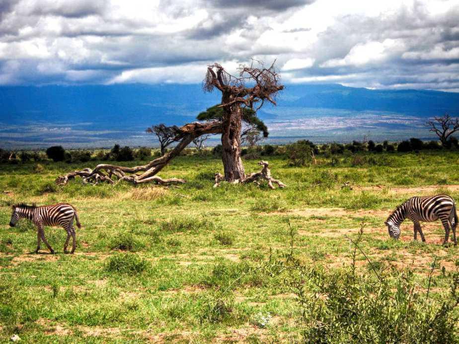 kenia-afrika-reise-bilder-289