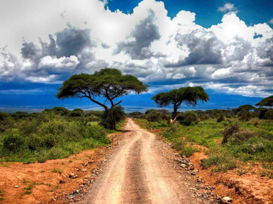 kenia-afrika-reise-bilder-305