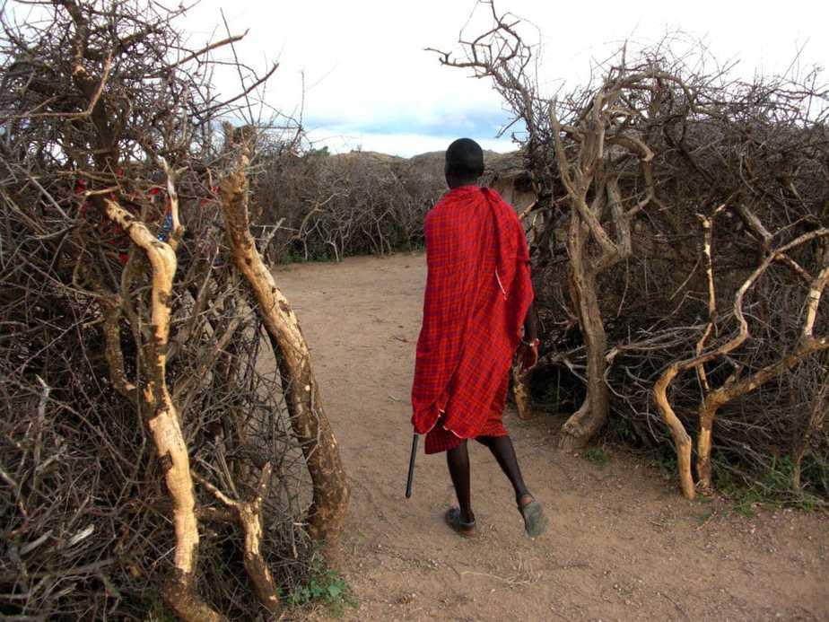 kenia-afrika-reise-bilder-431