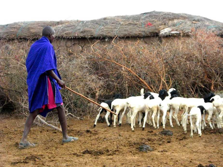kenia-afrika-reise-bilder-444